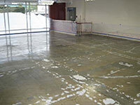 Plant Floor Restoration Los Angeles
